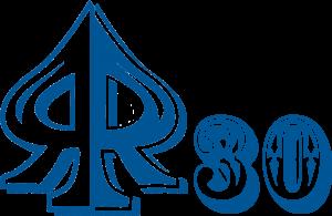 logo30